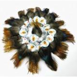 Coq de Leon Pardo Rihnon Feathers